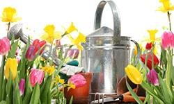 Лейки и поливалки садовые